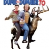 "Cinema ""Dumb and Dumber 2"""